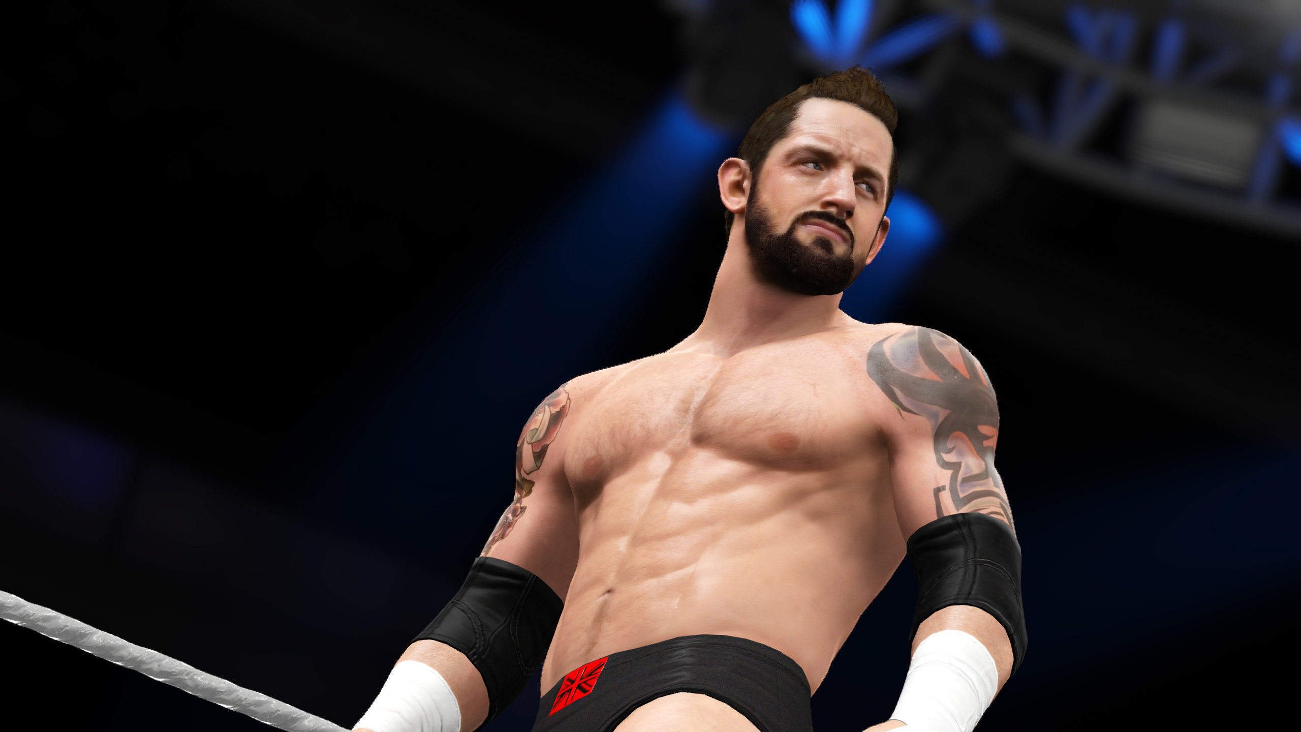 Wwe 2k16 ps4 for 16 wrestlers and their huge homes
