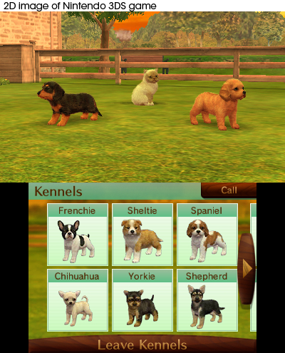 Nintendo Selects Nintendogs Cats Toy Poodle Nintendo