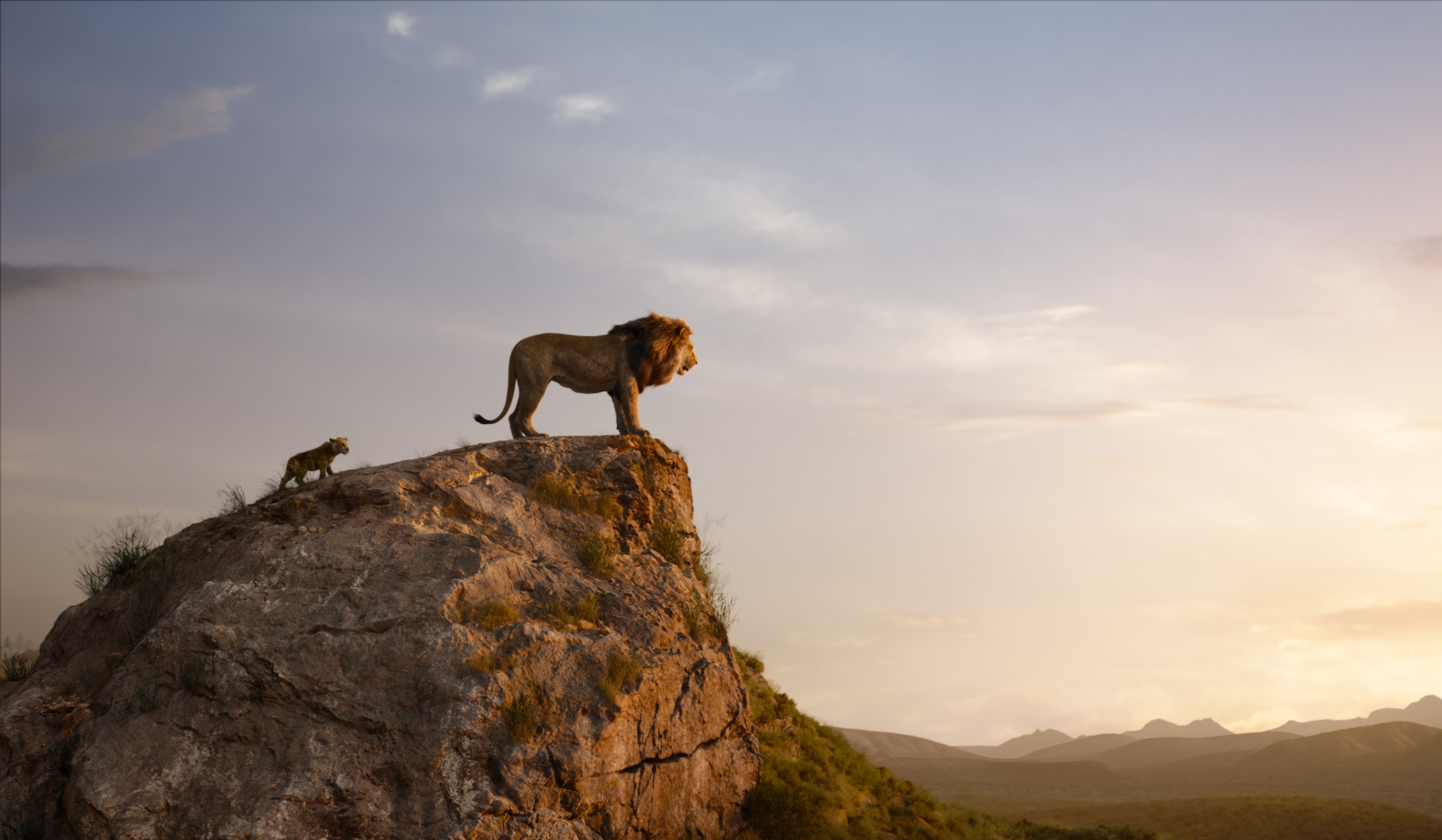 The Lion King Live Action Zavvi Exclusive 3d Steelbook Includes Blu Ray