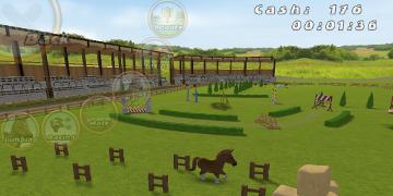 A horse running round an arena