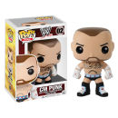 WWE CM Punk Pop! Vinyl Figure