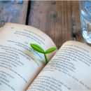 Bookmark Sprout