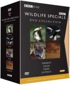 Wildlife Specials DVD Collection [Box Set]