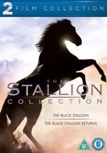 Black Stallion Double Pack