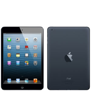 Apple iPad Mini: 16GB Wifi - Black and Slate