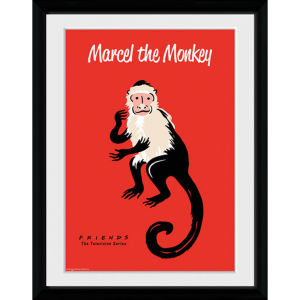 Friends Marcel - 30x40 Collector Prints