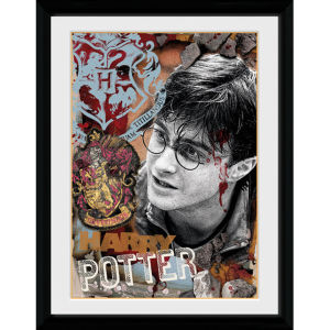 Harry Potter Harry Potter - 30x40 Collector Prints
