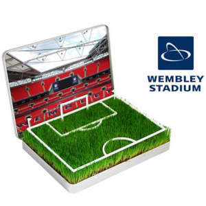 Grow Your Own Wembley Mini Pitch