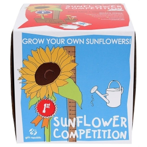 Sow and Grow Sunflowers