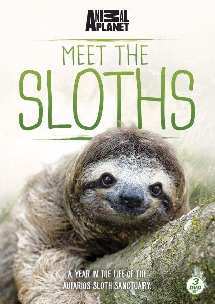 Meet The Sloths Dvd Zavvi