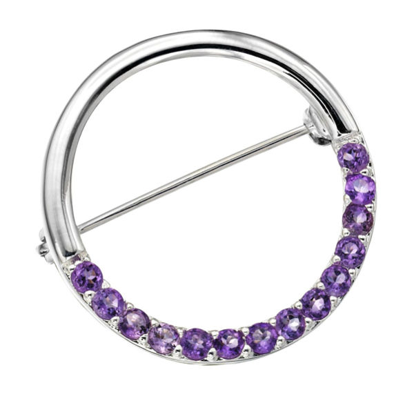 Silver Plated Circle Design Amethyst Pin