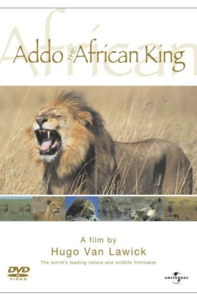 Addo: African King