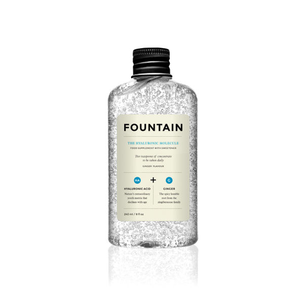 FOUNTAIN The HyaluronicMolecule (240 ml)
