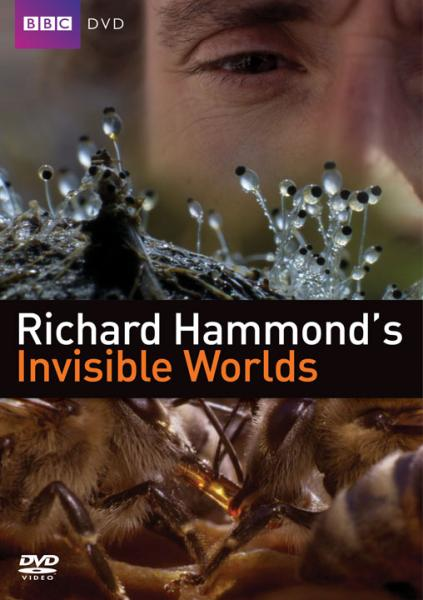 Richard Hammonds Invisible Worlds