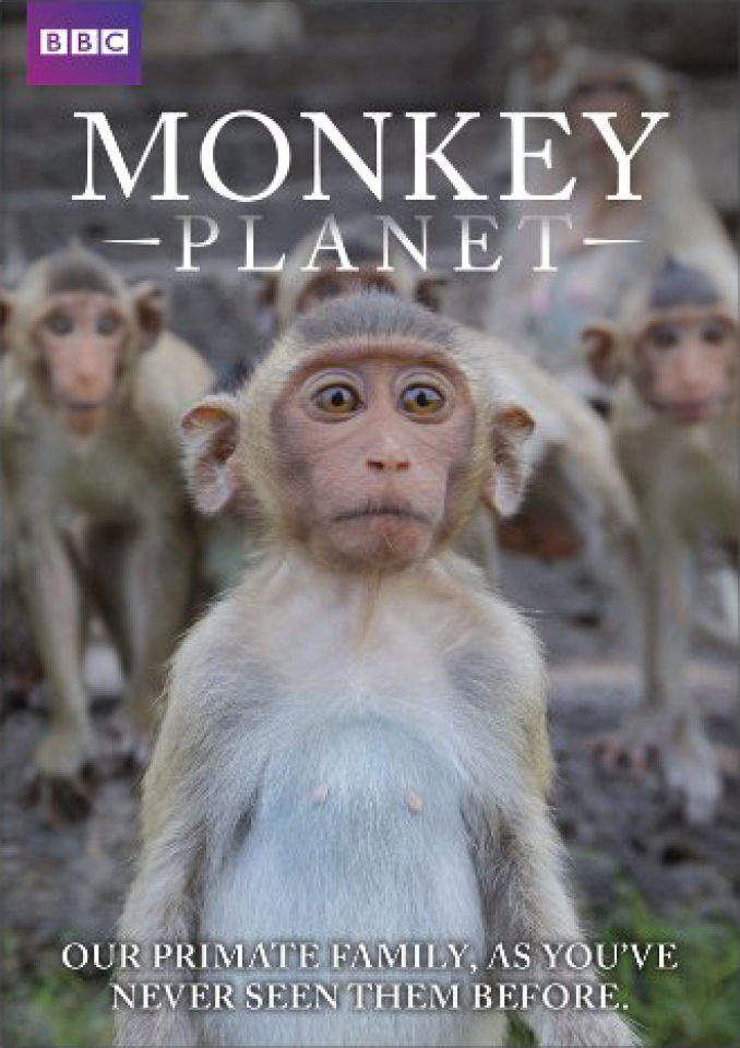 Monkey Planet Dvd Zavvi