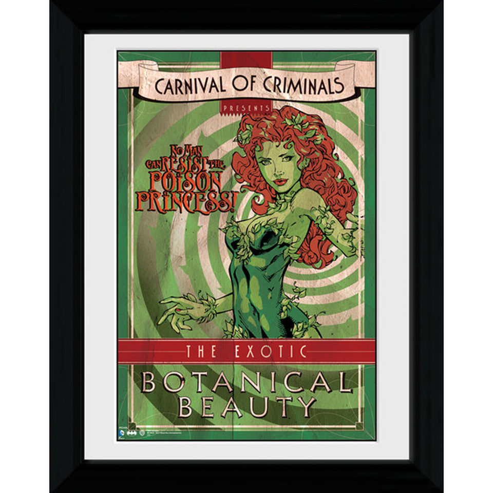 Batman Circus Poison Ivy - 30 x 40cm Collector Prints