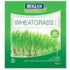 Bioglan Superfoods Supergreens Wheatgrass Powder - 100g: Image 1