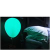 Balloon Lamp: Image 2
