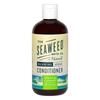 The Seaweed Bath Co. Argan Conditioner 360ml - Eucalyptus & Peppermint: Image 1