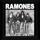 "The Ramones Album - 12"""" x 12"""" Framed Album Prints"