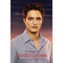 Twilight Breaking Dawn Part 1 Edward - 24 x 36 Inches Maxi Poster