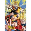 Dragon Ball Z Goku - 24 x 36 Inches Maxi Poster