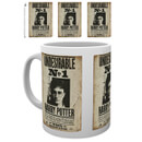 Harry Potter 'Undesirable #1' Mug