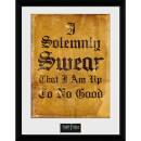Harry Potter I Solemnly Swear - 16 x 12 Inches Framed Photographic