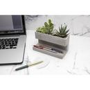 Concrete Desktop Planter and Pen Holder - Large