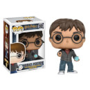 HARRY POTTER - HARRY POTTER CON LA PROFEZIA POP! VINYL