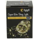 Lyyt 20 LED Copper Wire - Warm White