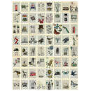 1 Wall Creative Collage Marion Mcconaghie 64 Piece Wallpaper Collage