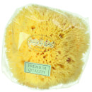 Hydrea London Honeycomb Sea Sponge, Size 4 - 4,5