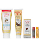 Burt's Bees Best of Burt's Gift Set