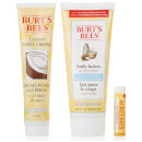 Burt's Bees Bundle of Nature Gift Set