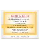 Burt's Bees Skin Nourishment Night Cream 51g