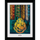 Harry Potter House Flags Collector's 50 x 70cm Framed Photograph