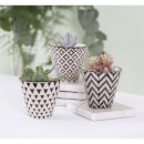 Sass & Belle Black Geo Mini Planters (Set of 3)