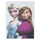 Disney Frozen Elsa and Anna Printed Canvas