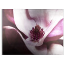 Art for the Home Metallic Plum Petals Printed Canvas