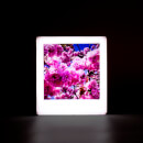 Magnetic Rose Gold Mini Photo Light Box