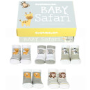Cucamelon Baby Safari Socks Gift Set - 0-12 Months