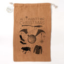 Harry Potter Officially Licensed All I Want for Christmas Christmas Sack