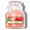 Yankee Candle Blush Bouquet/Fresh Cut Roses/A Calm & Quiet Place/Sun Drenched Apricot Rose