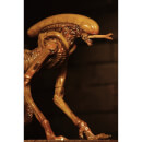 NECA Alien 3 - Accessory Pack - Creature Pack