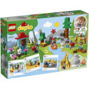 LEGO DUPLO: World Animals (10907)