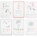 Sass & Belle Set of 16 Evie Unicorn Baby Milestone Cards