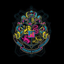 Harry Potter Hogwarts Neon Crest Sweatshirt - Black