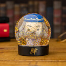 Harry Potter Dumbledore Snow Globe