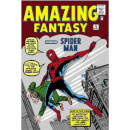 The Amazing Spider-Man Omnibus Vol. 1 Graphic Novel (Hardback)